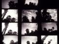 """1. Hoja de contactos del """"cielo con palmeras"""" para la fotografía del bimotor de Earhart. 01"""